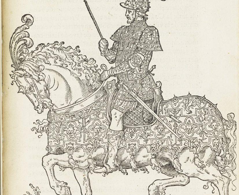 Entrée du roy Henri II. C'est l'ordre qui a este tenu a la nouvelle et joyeuse entrée, que… le Roy treschretien Henry deuzieme de ce nom…