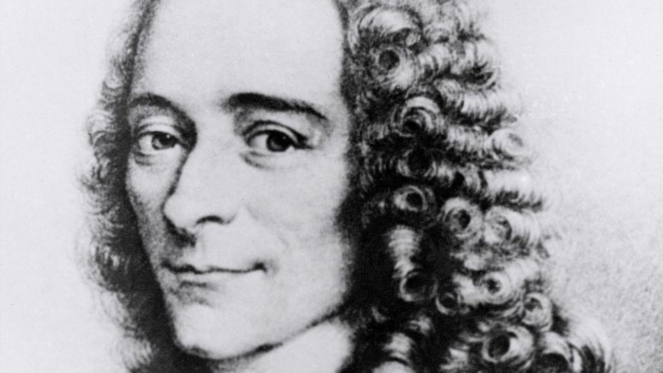 """""""Nous avons besoin d'un Voltaire dans l'âge de Trump"""" (Robert Darnton)"""