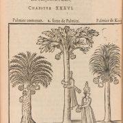 La Boullaye. Voyages